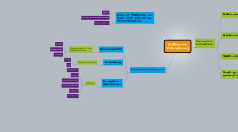 Mind Map: Einflüsse der Wahrnehmung