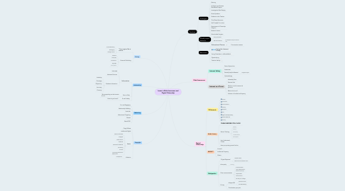 Mind Map: Issues in Web Awareness and Digital Citizenship