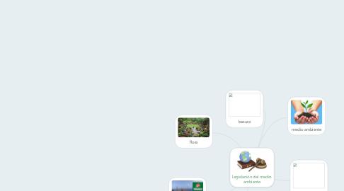 Mind Map: legislación del medio ambiente