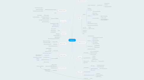 Mind Map: AWEX.be