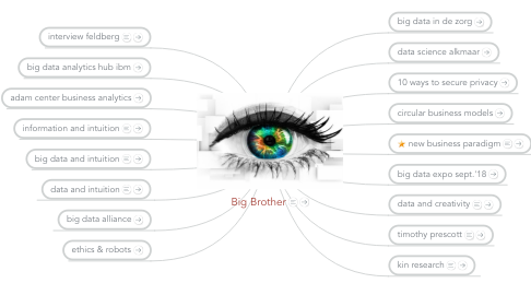 Mind Map: Big Brother