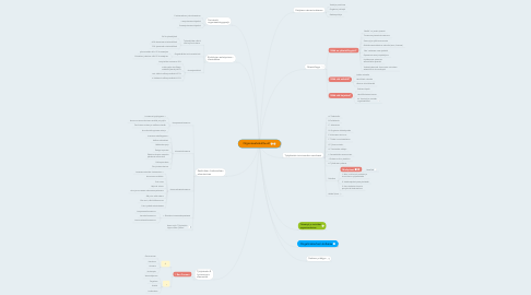 Mind Map: Organisaatiokulttuurit