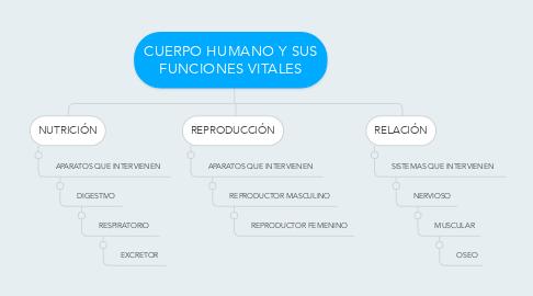Mind Map: CUERPO HUMANO Y SUS FUNCIONES VITALES