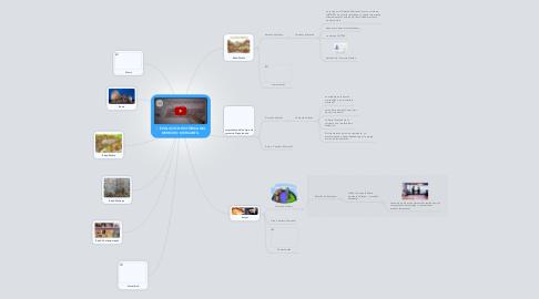 Mind Map: EVOLUCIÓN HISTÓRICA DEL DERECHO MERCANTIL