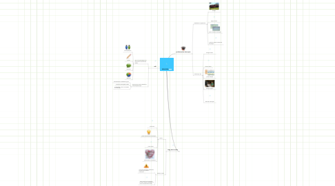 Mind Map: PROVEDOR