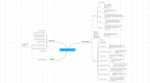 Mind Map: Developmental Theories