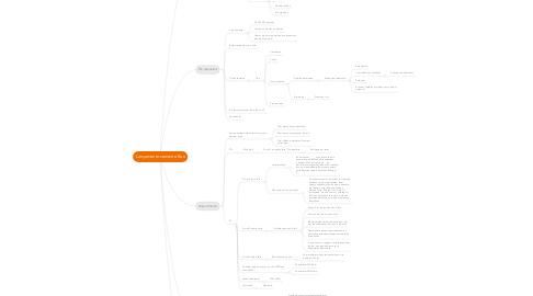 Mind Map: Lançamento semente Box