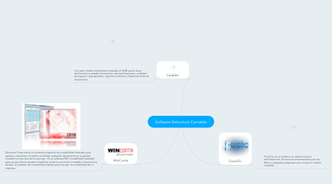 Mind Map: Software Estructura Contable