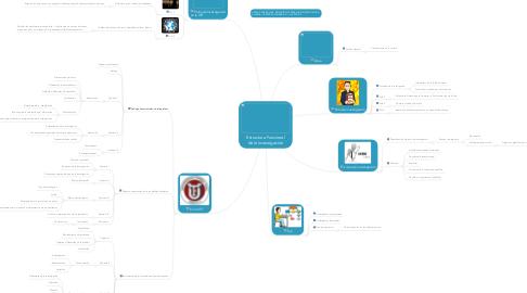 Mind Map: Estructura Funcional de la investigación