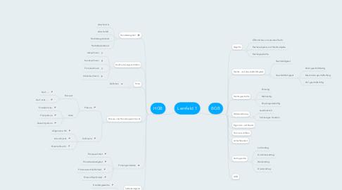Mind Map: Lernfeld 1