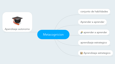 Mind Map: Metacognicion