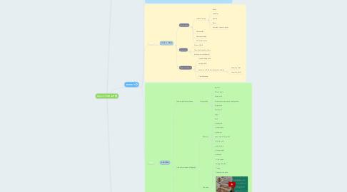 Mind Map: Copy of FINE ART