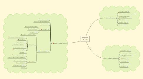 Mind Map: BİTKİLER ALEMİ