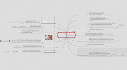Mind Map: Special Education Categories and Accommodations through IDEA