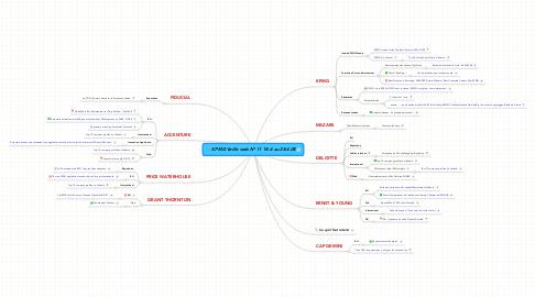 Mind Map: KPMG Veille web N° 11 18.4 au 28.4.08