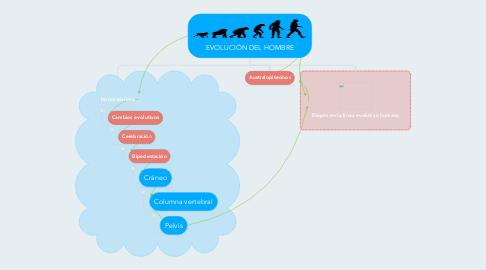Mind Map: EVOLUCIÓN DEL HOMBRE
