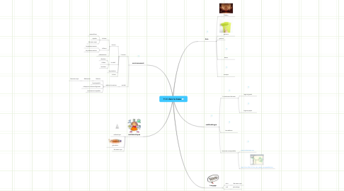 Mind Map: T.I.C dans la classe