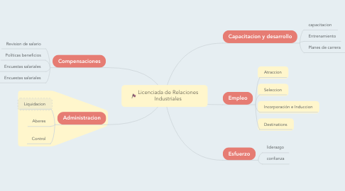 Mind Map: Licenciada de Relaciones Industriales