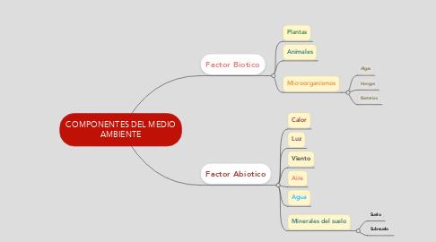Mind Map: COMPONENTES DEL MEDIO AMBIENTE