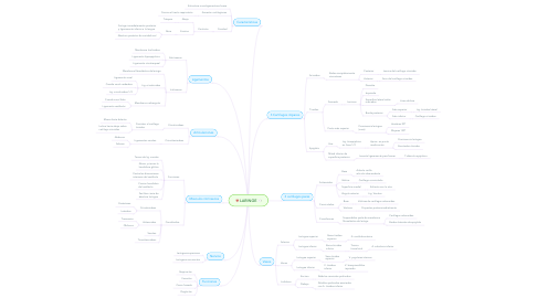 Mind Map: LARINGE