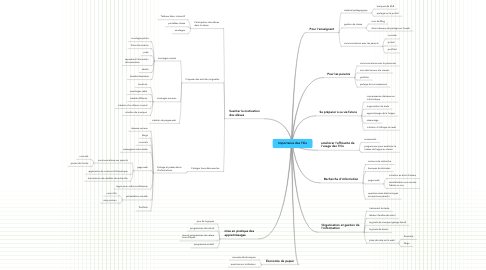 Mind Map: Importance des TICs