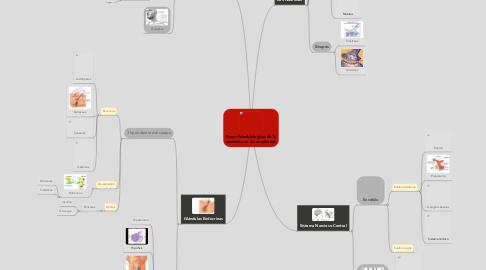 Mind Map: Bases Psicobiologicas de la conducta en los empleados