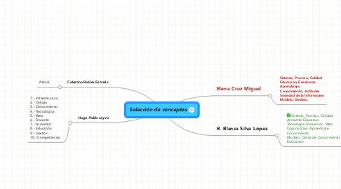 Mind Map: Selección de conceptos