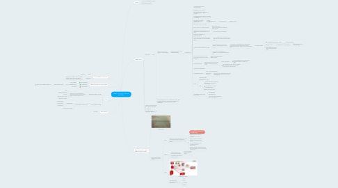 Mind Map: Intake 4-12-2015 + Kick-off 15-1-2016