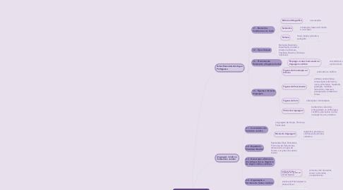 Mind Map: Teoria da Argumentação  Jurídica