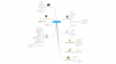 Mind Map: Les usages des TIC