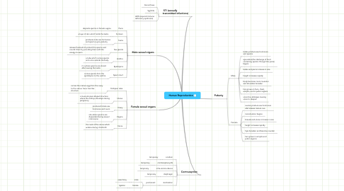 Mind Map: Human Reproduction
