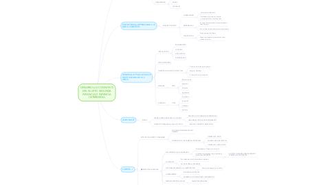 Mind Map: DESARROLLO COGNITIVO DEL SUJETO SEGUNDA INFANCIA O INFANCIA INTERMEDIA