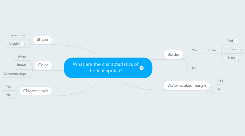 Mind Map: What are the characteristics of the leaf spot(s)?