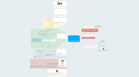 Mind Map: DECLARACIÓN ADUANERA