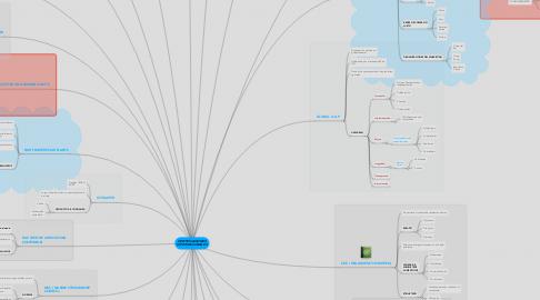 Mind Map: CERTIFICACIONES INTERNACIONALES