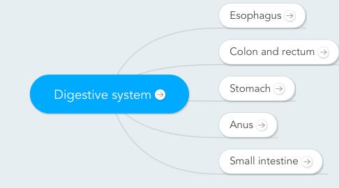 Mind Map: Digestive system