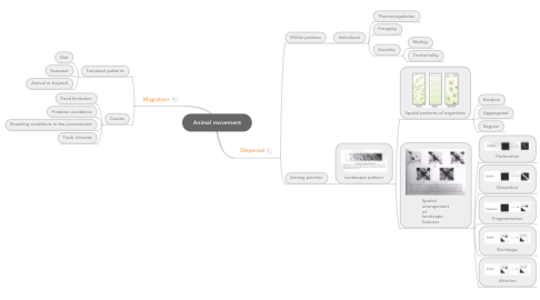 Mind Map: Animal movement
