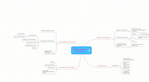 Mind Map: verkko-oppimisen asiantuntijuus