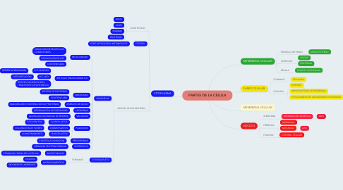 Mind Map: PARTES DE LA CÉLULA