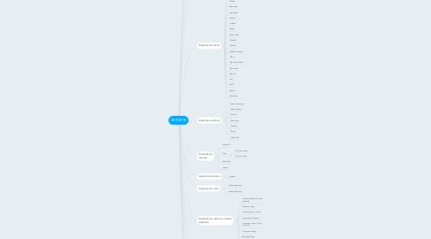 Mind Map: DEPORTE