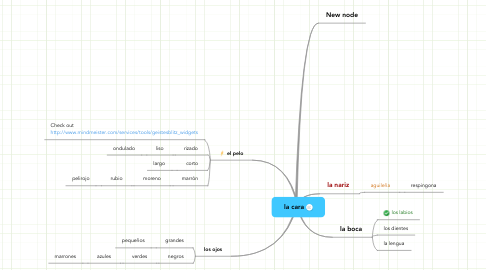Mind Map: la cara