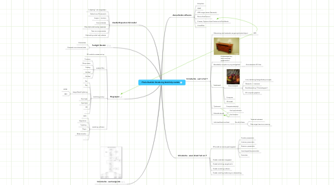 Mind Map: Photo Realistic Rendering SketchUp models