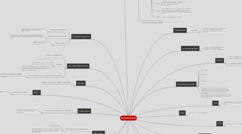 Mind Map: Immunforsvaret