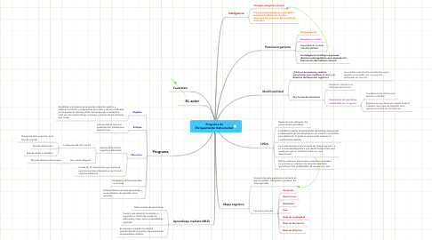 Mind Map: Programa de Enriquemiento Instrumental