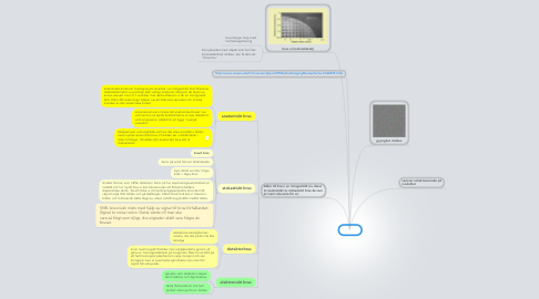 Mind Map: BRUS