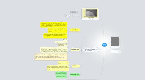 Mind Map: BRUS