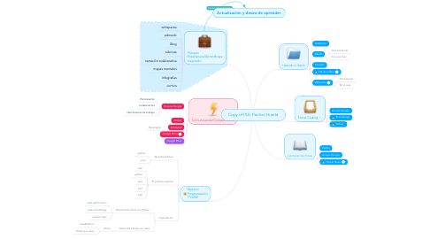 Mind Map: Copy of PLE: Paulino Huerta