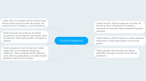 Mind Map: TEJIDOS ANIMALES
