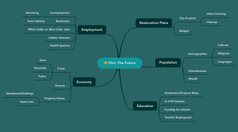 Mind Map: Flint -The Future
