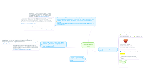 Mind Map: Expectativas del curso